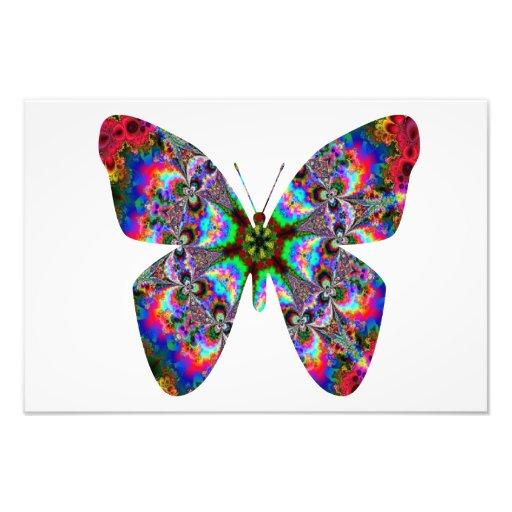 Mandala colorida da borboleta impressão de foto