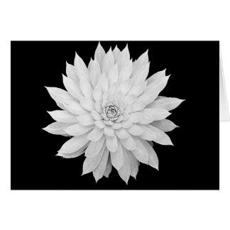 Mandala do Succulent Cartão Comemorativo