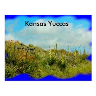 Mandiocas de Kansas em um cartão do montanhês