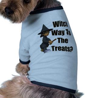 Maneira da bruxa camisas para cães
