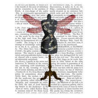 Manequim da libélula cartão postal