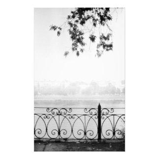 Manhã do Cobweb Impressão De Foto