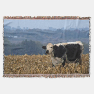 Manta A vaca preto e branco pasta no campo recentemente