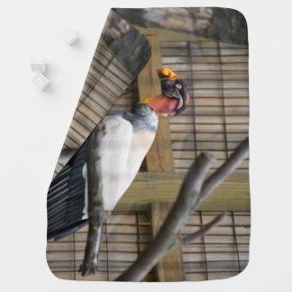 Manta De Bebe Fotografia do abutre