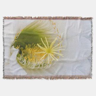 Manta Dentro de um Echinopsis na flor