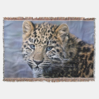 Manta O leopardo Cub joga a cobertura