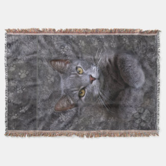 Manta Retrato cinzento do gato