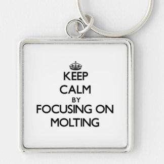 Mantenha a calma centrando-se sobre Molting