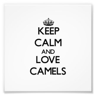 Mantenha a calma e ame camelos foto arte
