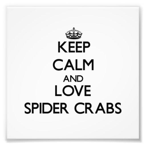 Mantenha a calma e ame caranguejos de aranha impressão de foto