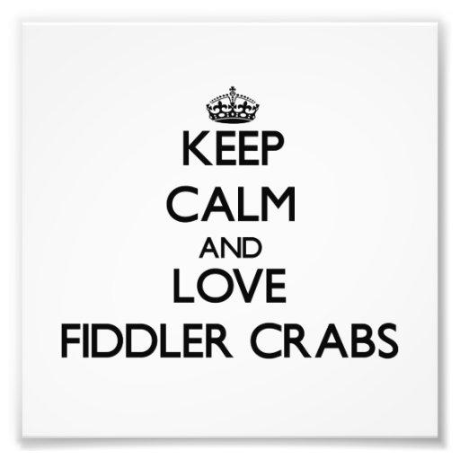 Mantenha a calma e ame caranguejos de violinista foto