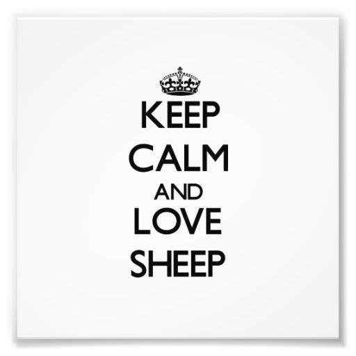 Mantenha a calma e ame carneiros impressão de foto
