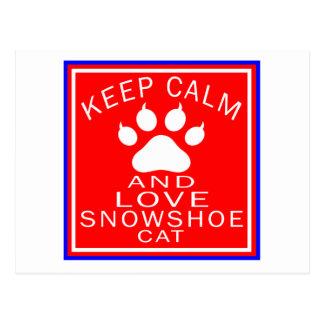 Mantenha a calma e ame o sapato de neve cartoes postais