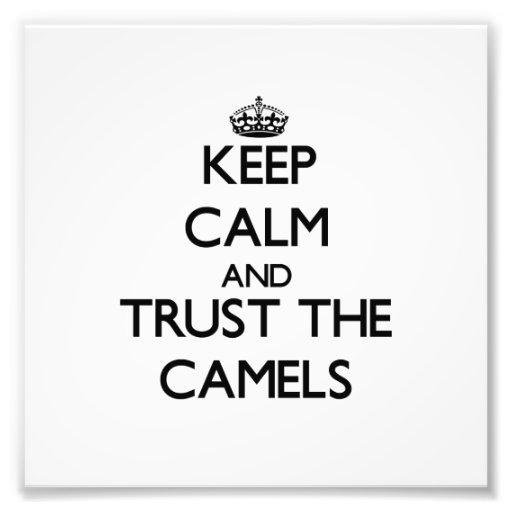 Mantenha a calma e confie os camelos fotografia
