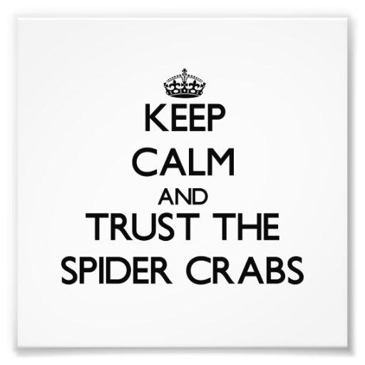 Mantenha a calma e confie os caranguejos de aranha foto