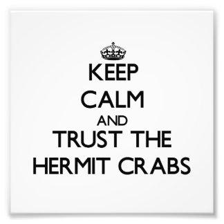 Mantenha a calma e confie os caranguejos de eremit