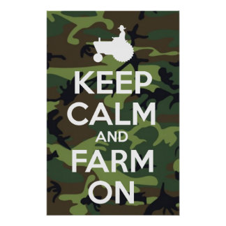 Mantenha a calma e cultive-a na camuflagem pôster
