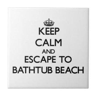 Mantenha a calma e escape à praia Florida da Azulejos
