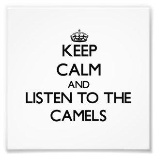 Mantenha a calma e escute os camelos fotografia