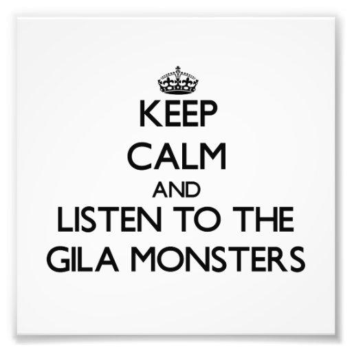 Mantenha a calma e escute os monstro de Gila Foto