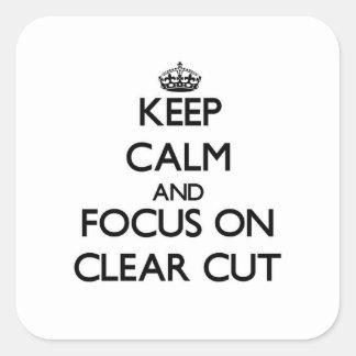 Mantenha a calma e o foco em bem defenido adesivos quadrados