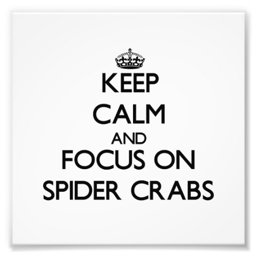 Mantenha a calma e o foco em caranguejos de aranha foto arte