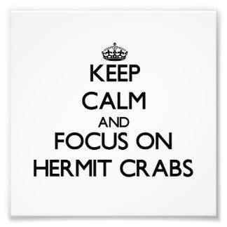 Mantenha a calma e o foco em caranguejos de eremit