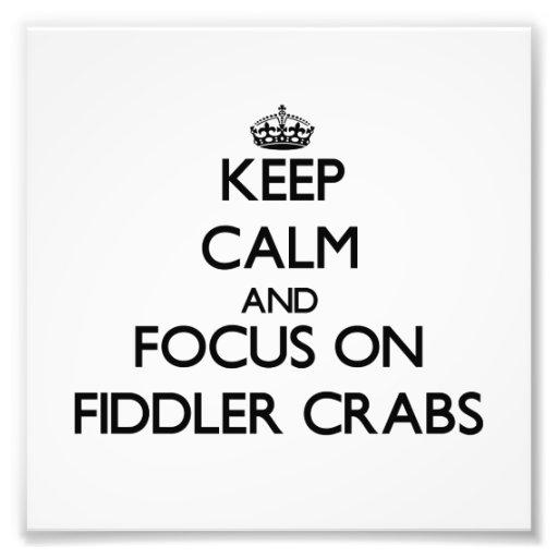 Mantenha a calma e o foco em caranguejos de violin foto arte