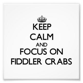 Mantenha a calma e o foco em caranguejos de violin