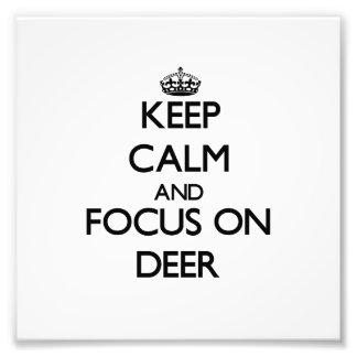 Mantenha a calma e o foco em cervos arte de fotos