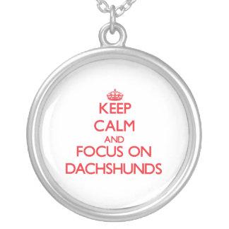Mantenha a calma e o foco em Dachshunds