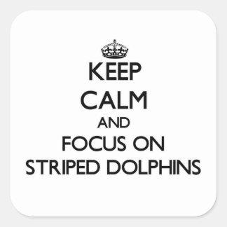 Mantenha a calma e o foco em golfinhos listrados adesivo quadrado