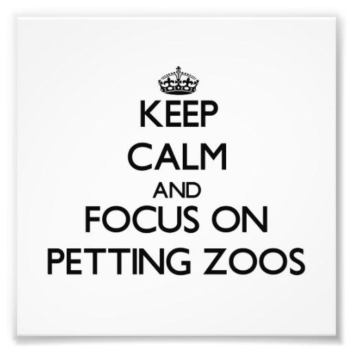 Mantenha a calma e o foco em jardins zoológicos Pe Impressão De Fotos
