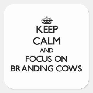 Mantenha a calma e o foco em vacas de marcagem com