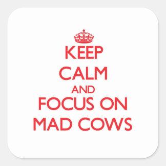 Mantenha a calma e o foco em vacas loucas adesivo quadrado