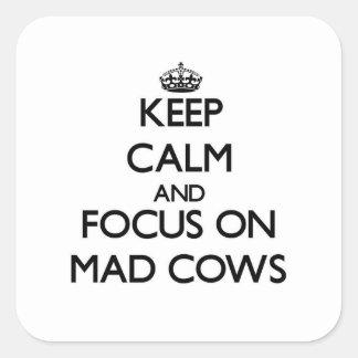 Mantenha a calma e o foco em vacas loucas