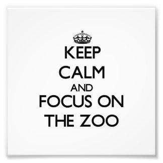Mantenha a calma e o foco no jardim zoológico
