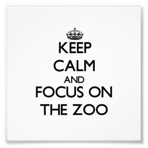 Mantenha a calma e o foco no jardim zoológico artes de fotos