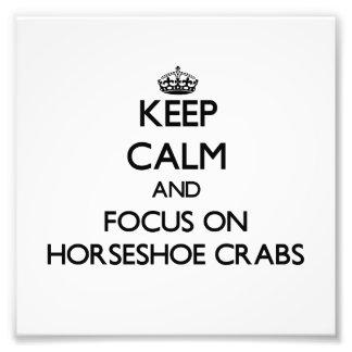Mantenha a calma e o foco nos caranguejos em ferra