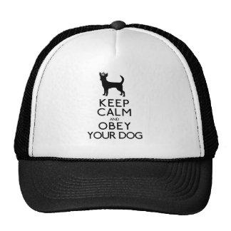 Mantenha a calma e obedeça seu cão boné