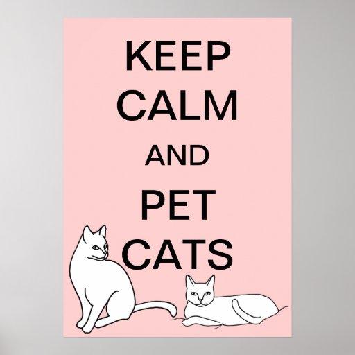 Mantenha a calma e os posters do costume dos gatos pôster