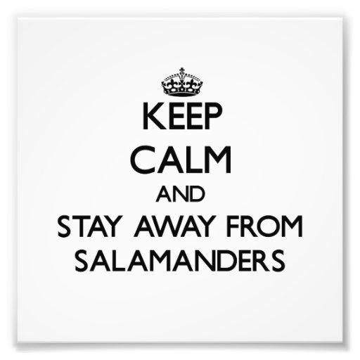 Mantenha a calma e permaneça longe das salamandras foto arte