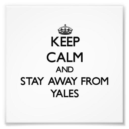 Mantenha a calma e permaneça longe de Yales Impressão Fotográficas