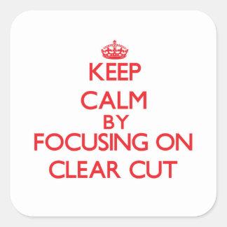 Mantenha a calma focalizando em bem defenido adesivos