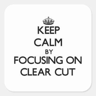 Mantenha a calma focalizando em bem defenido adesivos quadrados