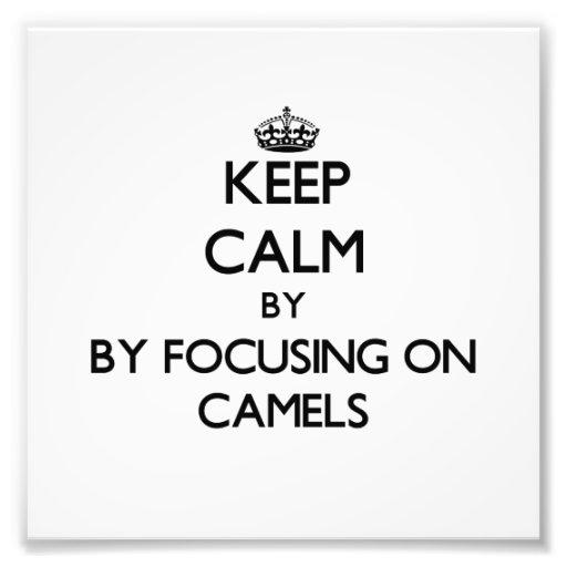 Mantenha a calma focalizando em camelos impressão fotográficas