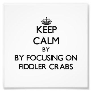 Mantenha a calma focalizando em caranguejos de vio