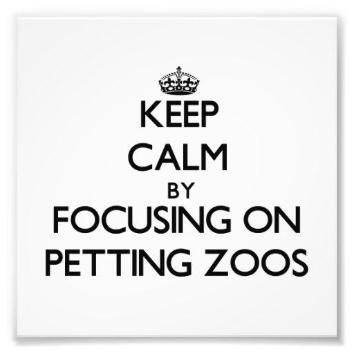 Mantenha a calma focalizando em jardins zoológicos impressão fotográficas