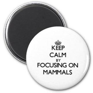 Mantenha a calma focalizando em mamíferos ima