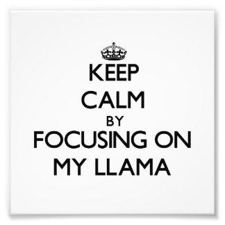 Mantenha a calma focalizando em meu lama